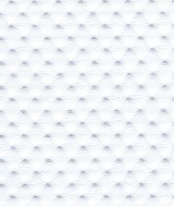 Pointillé Blanc