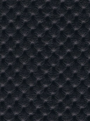 Pointillé Noir